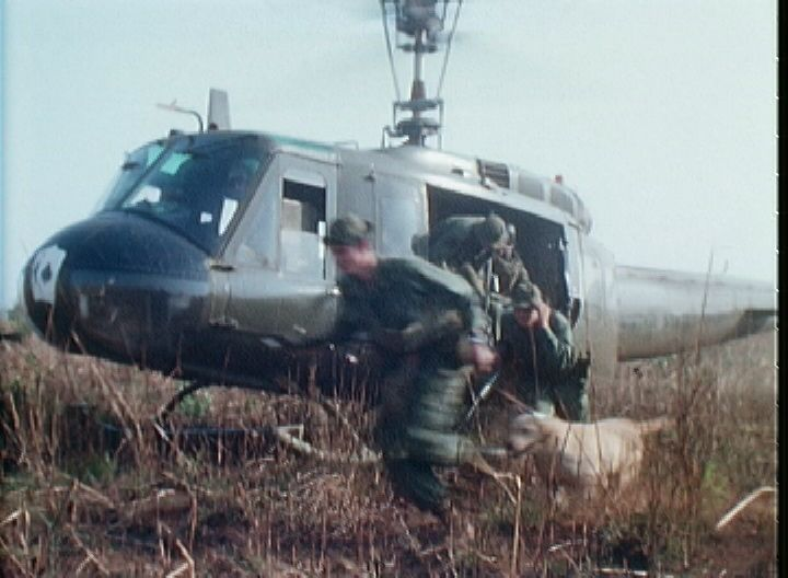 Combat Tracker Vietnam War Dogs Labrador Retriever